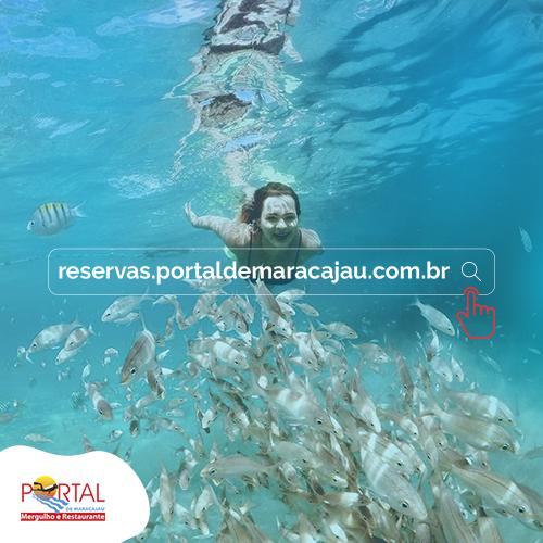 Faça a reserva do mergulho em Maracajaú agora mesmo