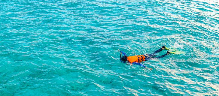 Mergulhando com Snorkel